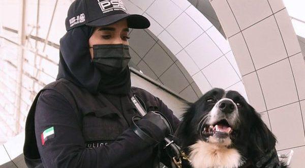 Кучиња откриваат коронавирус во Обединетите Арапски Емирати